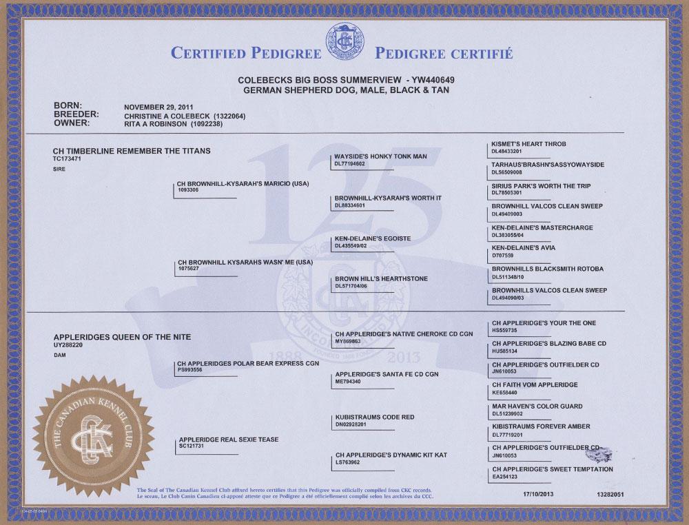 German Shepherd Pedigree Certificate