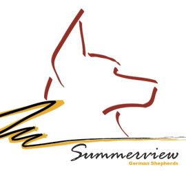Summerview German Shepherds - Acton, Ontario